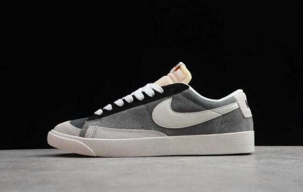 Buy Nike Blazer Low LX Plant Color Wmns Collection pink